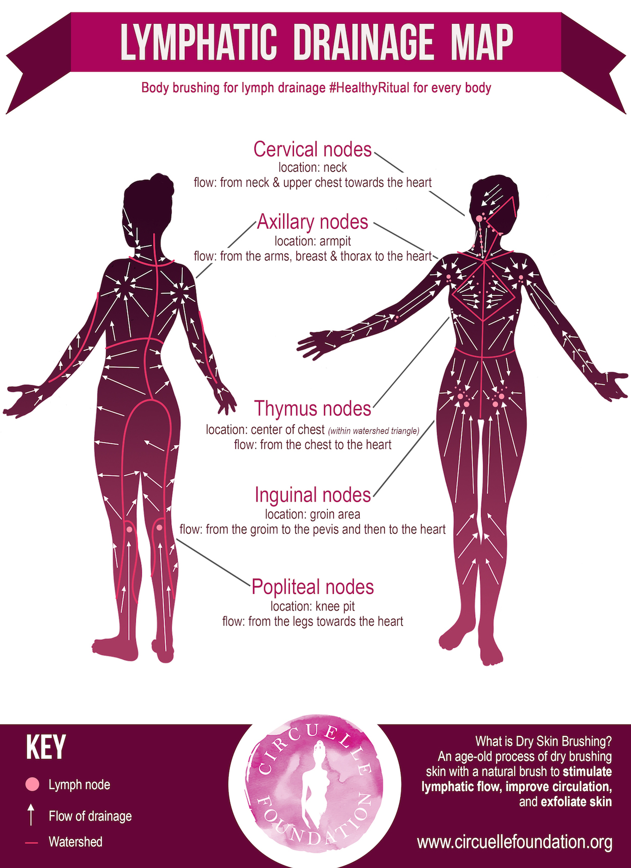 Lymphatic Skin Brushing For Breast And Body Health